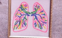 Het doneren van je organen